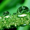 burbulas3