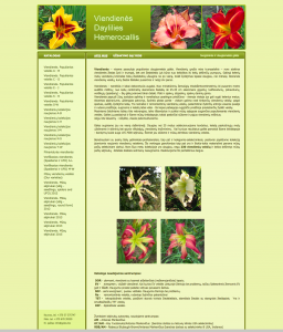 daylilies.lt